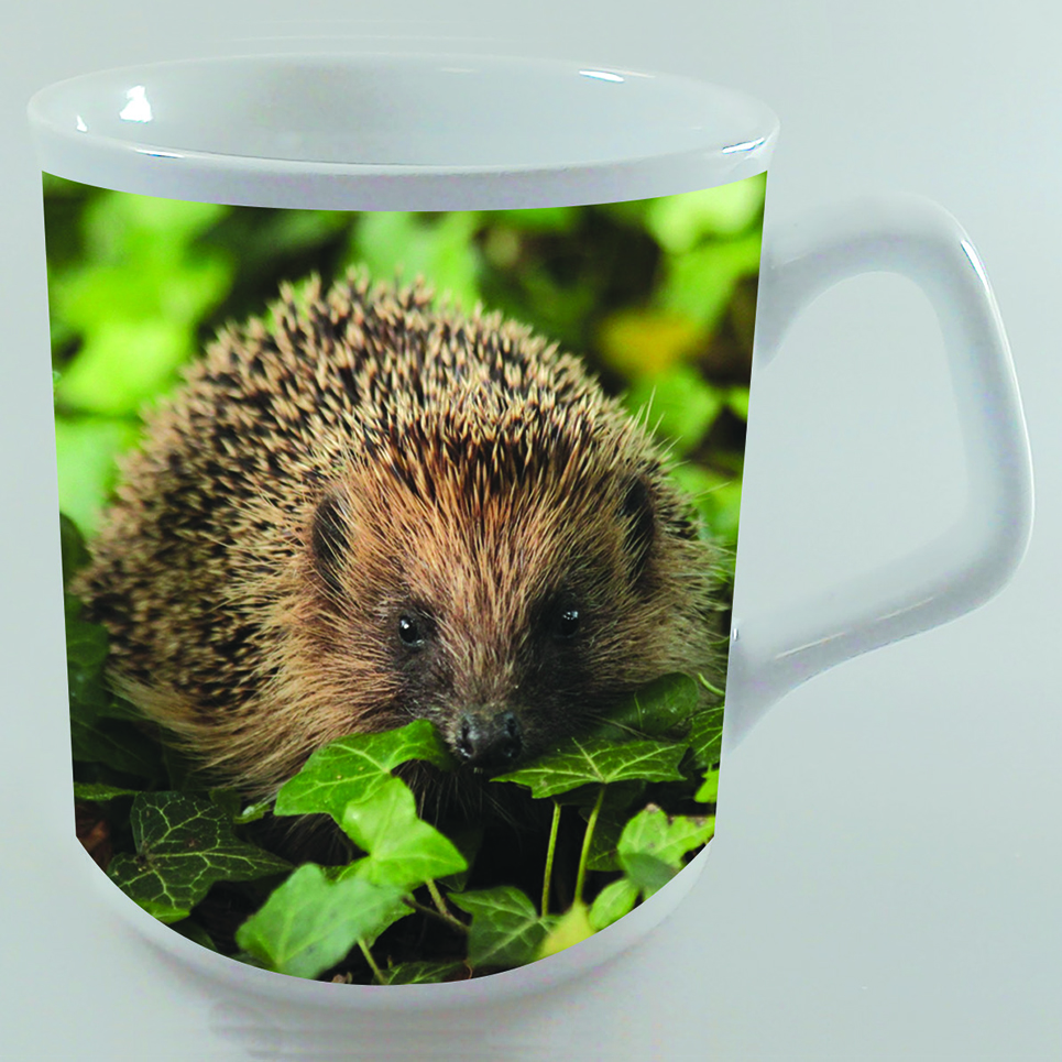 Hedgehog Ceramic Mug