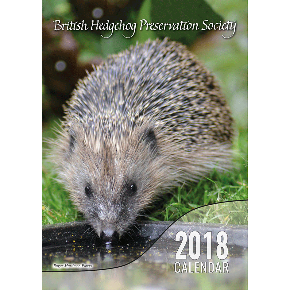 2018 Calendar. We've designed our own calendar with pictures sent in from BHPS members, volunteer rehabilitators and members of the public. Approx. 30cm x 20cm (12'' x 8'').