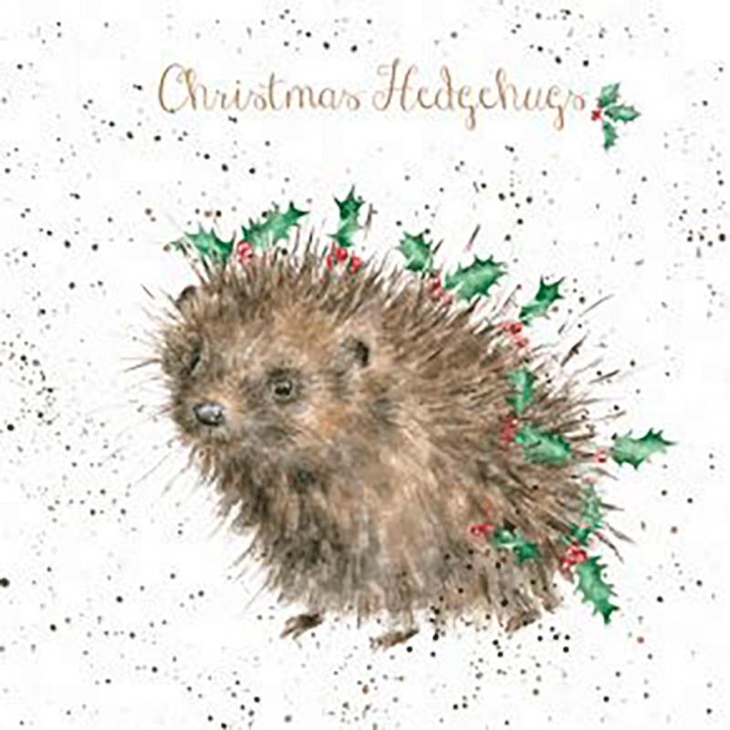 Christmas Hedgehugs Card The British Hedgehog