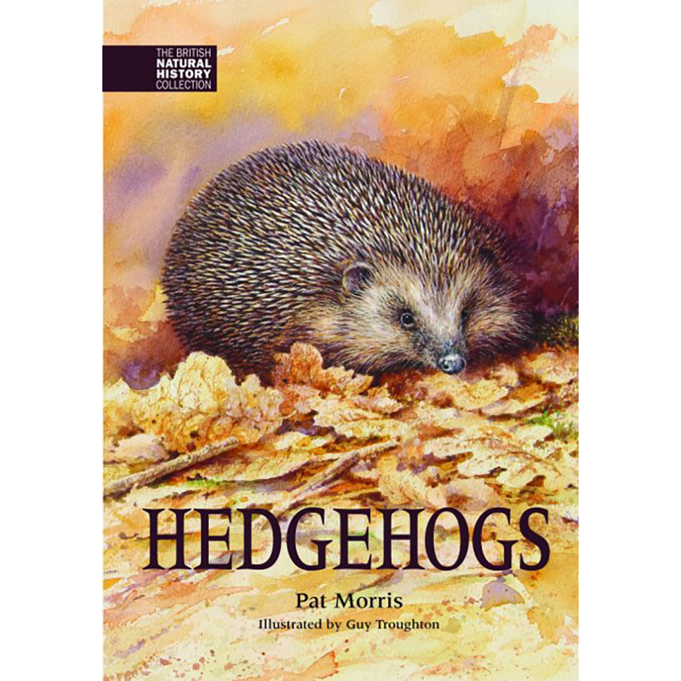 The new hedgehog book
